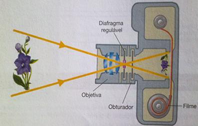 Nas câmeras fotográficas, as lentes são colocadas de modo a configurar uma associação de lentes esféricas