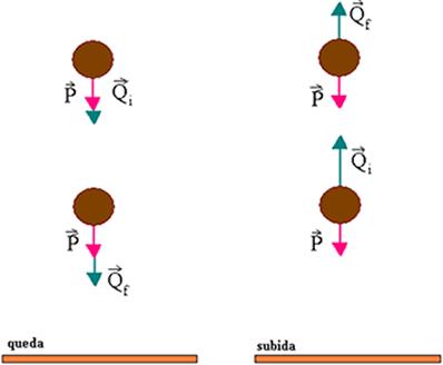 Variação da quantidade de movimento na queda e na subida de uma bola