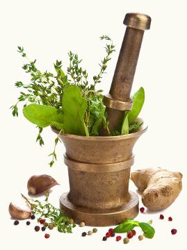 As plantas medicinais devem ser usadas com cautela