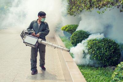 Todos os anos agentes de saúde travam uma luta contra o mosquito-da-dengue para evitar uma epidemia