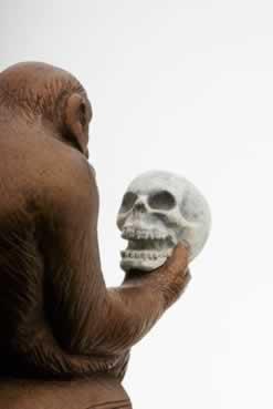 O grande paradigma da humanidade é estudar a origem humana