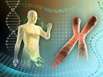O cromossomo é formado por DNA e proteínas