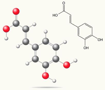Estrutura do ácido cafeico, que apresenta isomeria do tipo E-Z