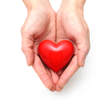 A doação de órgãos é uma atitude que pode salvar vidas