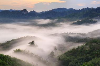 A neblina é o ar úmido condensado perto do solo