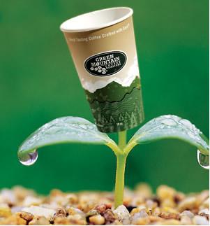 A produção de plástico biodegradável é muito importante para ajudar a solucionar um dos maiores problemas ambientais de nossa era