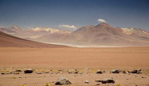 Nas regiões de clima desértico, a paisagem altera-se pouco no decorrer do ano em razão da baixa umidade
