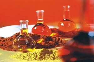Catalisadores aceleram reações químicas