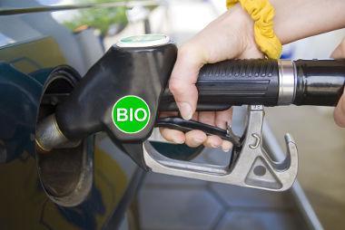 Os biocombustíveis são vistos como uma das alternativas aos combustíveis fósseis