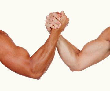 O tecido muscular estriado esquelético apresenta contração voluntária