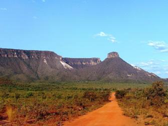 Jalapão: o cerrado é a vegetação predominante
