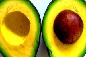 Abacate: fruto carnoso do tipo drupa.