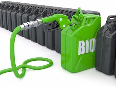 O biocombustível é menos poluente que os combustíveis fósseis, mas não é totalmente limpo