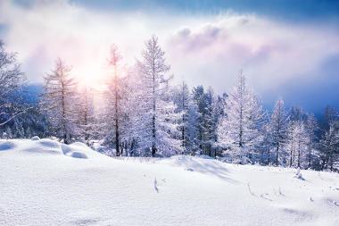 Nas áreas mais próximas aos polos, é comum nevar durante o inverno
