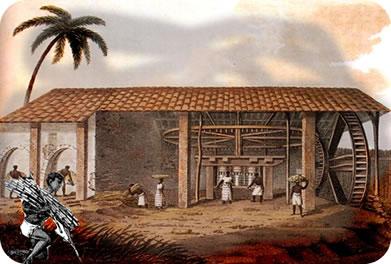 O trabalho escravizado constituía cerca de 80% dos trabalhadores dos engenhos coloniais.