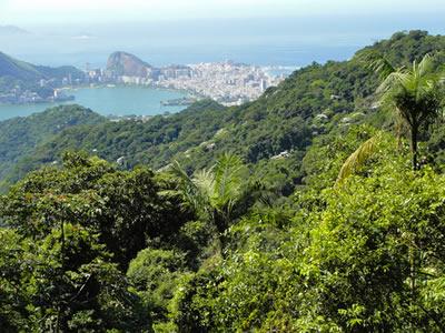 Rio de Janeiro, com a Mata Atlântica em primeiro plano. Apesar de manter áreas preservadas, a urbanização da cidade degradou o ecossistema