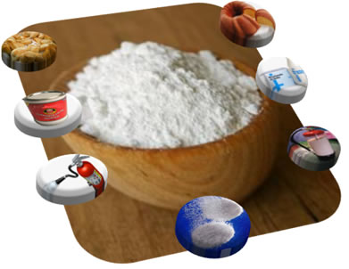 O bicarbonato de sódio, usado em antiácidos, fermentos e extintores, é um exemplo de sal básico, obtido por meio de uma reação de neutralização parcia