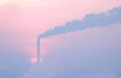 O ar poluído das cidades causa muitos danos à nossa saúde