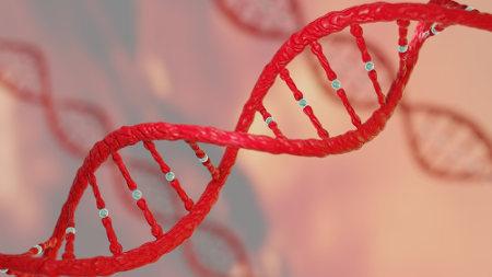 Na deriva genética, ocorre uma flutuação não esperada nas frequências alélicas