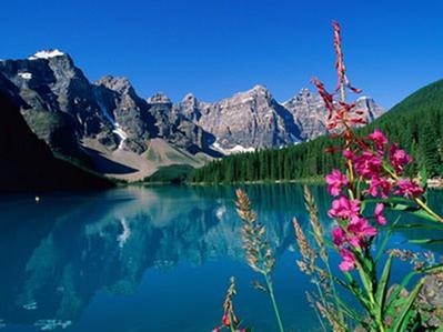 A superfície da água reflete a imagem da paisagem à sua volta
