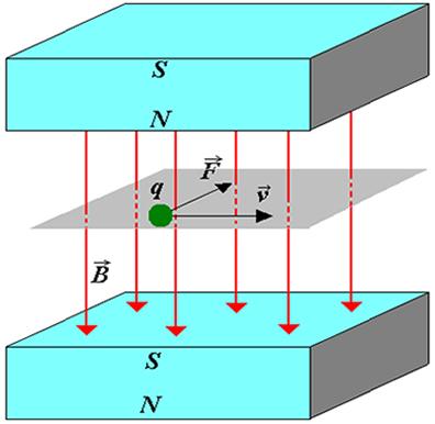 A força magnética é perpendicular ao campo magnético B e a velocidade v da carga q