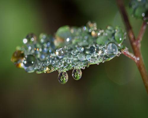 Para Tales, o princípio de tudo seria a água