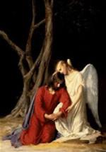 Veneram santos por acreditarem que são intermediários entre o homem e Deus
