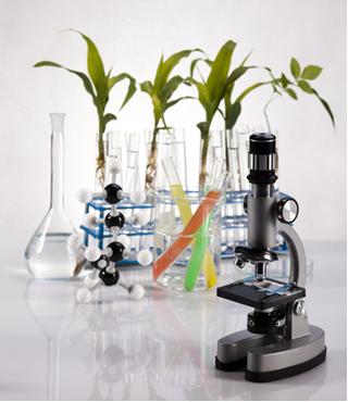 Para facilitar os estudos das substâncias, elas foram divididas em inorgânicas e orgânicas