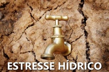 O estresse hídrico está relacionado com a disponibilidade de água em relação ao seu uso