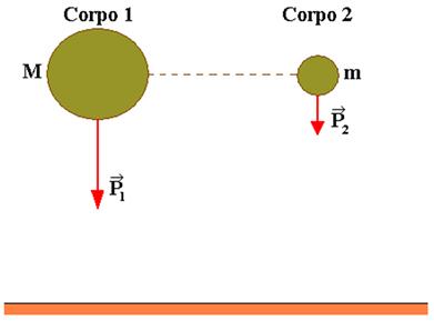 Corpos de massas diferentes caem ao mesmo tempo quando estão no vácuo