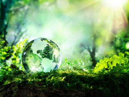 A Ecologia estuda a relações dos seres vivos entre si e com o meio