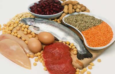 As fontes de proteína na alimentação são carnes, peixes, ovos, laticínios (como queijo, leite e iogurte) e leguminosas (como feijão, lentilha e soja).