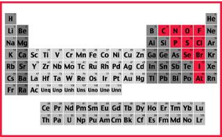 Os elementos classificados como ametais ou não metais na tabela periódica são os destacados em vermelho na imagem acima