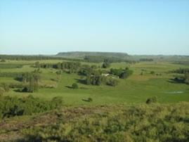 As grandes propriedades rurais brasileiras ocupam a maioria das áreas agrícolas.