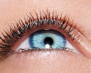 Globo ocular humano