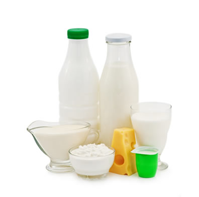 Bactérias heterotróficas que realizam fermentação são muito úteis aos seres humanos