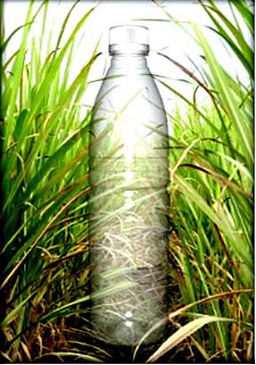 O plástico verde é obtido por meio da cana-de-açúcar, que é um recurso renovável