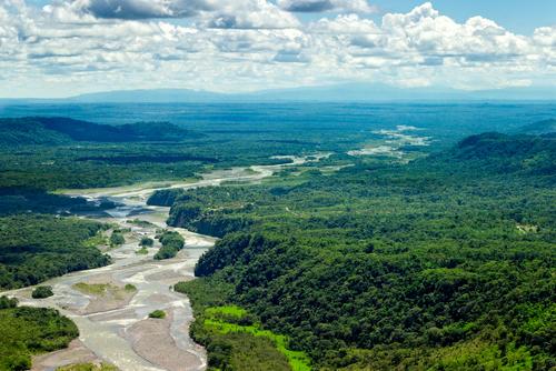 A Amazônia é uma grande produtora de chuvas no Brasil, aumentando a oferta de água