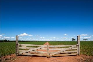 A fronteira agrícola continua em franca expansão no país
